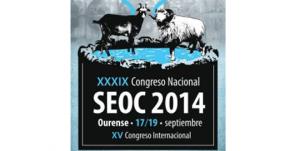 seoc 2014 ourense