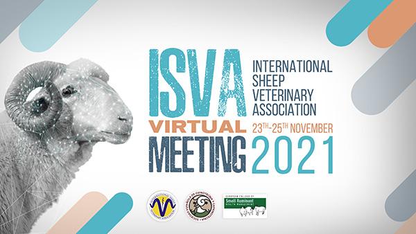 ISVA2021600